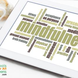 Mindfulness Wrap Up
