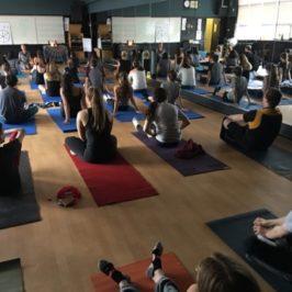 Yoga and Mindfulness Workshops
